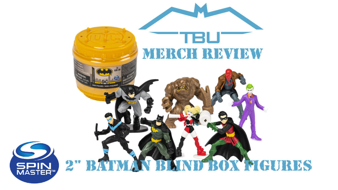 "spin master batman 2"" blind box figures"